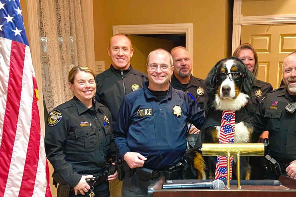 Hund einstimmig zum Bürgermeister gewählt
