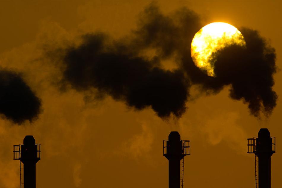 Die Konzentration klimaschädlicher Treibhausgase in der Atmosphäre ist hoch wie nie.
