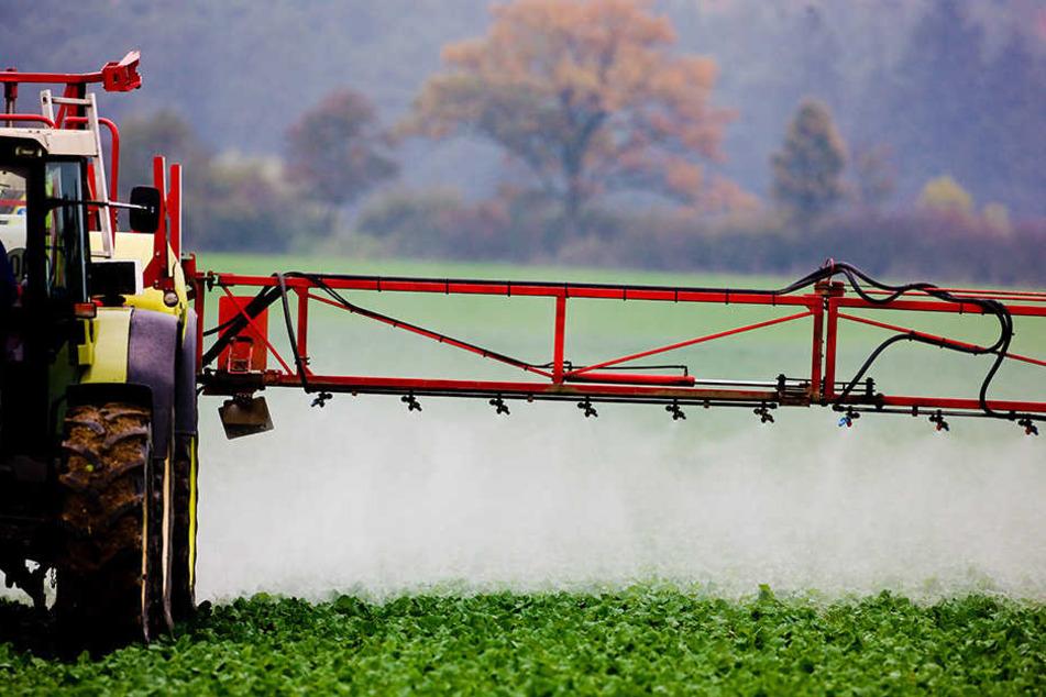 Pflanzenschutz-Mittel verpestet Grundwasser