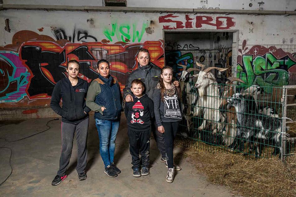 Seit 2010 verzaubert die fünfköpfige Familie Köllner mit ihrem Circus Piccolino das Publikum in und um Dresden - jetzt gab es einen fiesen Anschlag auf ihr Winterquartier.