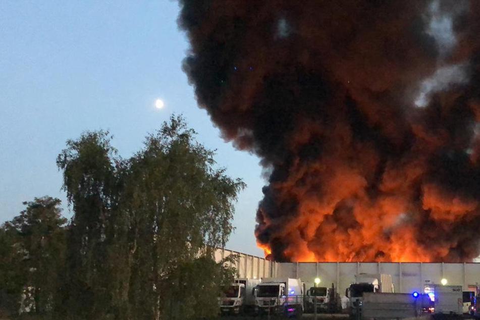 Feuerwehr-Einsatz! Meterhohe Flammen in Recyclingbetrieb bei Dresden