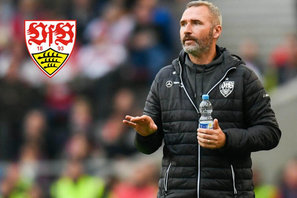 VfB-Trainer Tim Walter trifft im Derby gegen den KSC auf seine Vergangenheit