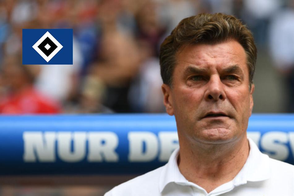 HSV-Trainer Hecking warnt nach Trainerwechsel vor dem KSC