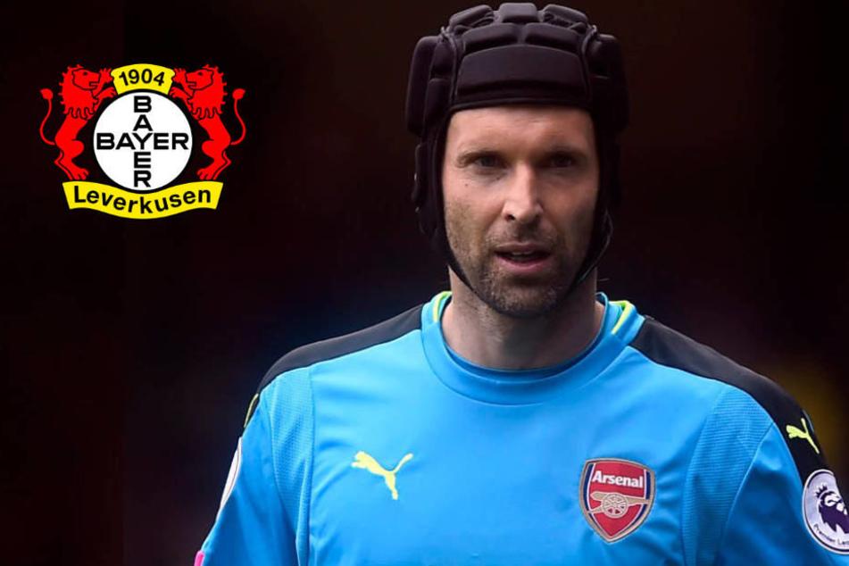 Von Bayer Leverkusen verarscht: Arsenals Petr Cech stinksauer
