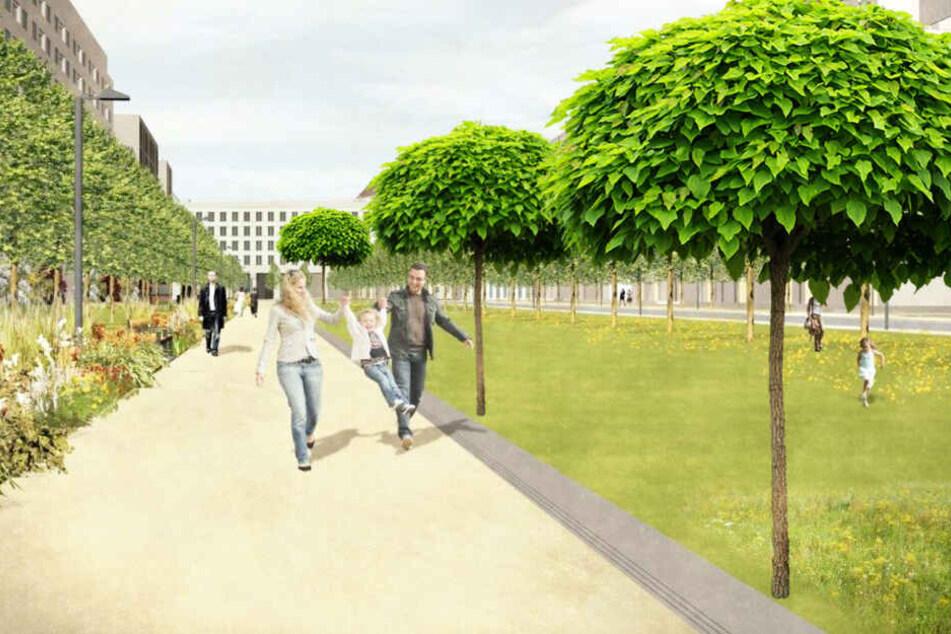 Eine dritte Baumreihe könnte die Fläche aufwerten.