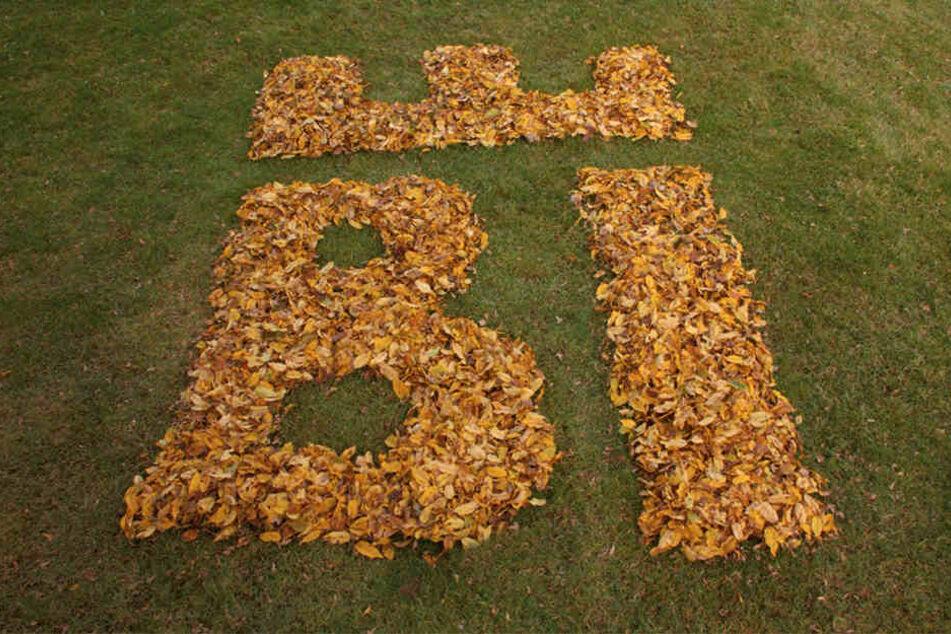 Hier wurde kreativ im Herbst das Laub zum neuen Logo zusammen gekehrt.