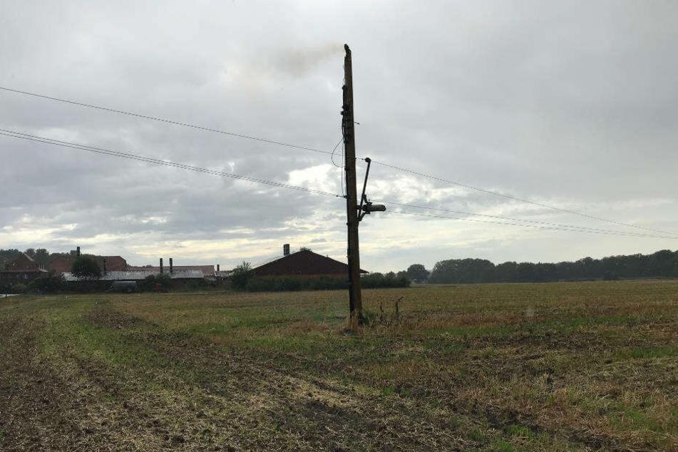 Auf einem Feld in Nordkirchen ist ein Strommast aus Holz vermutlich wegen eines Blitzeinschlags in Brand geraten.