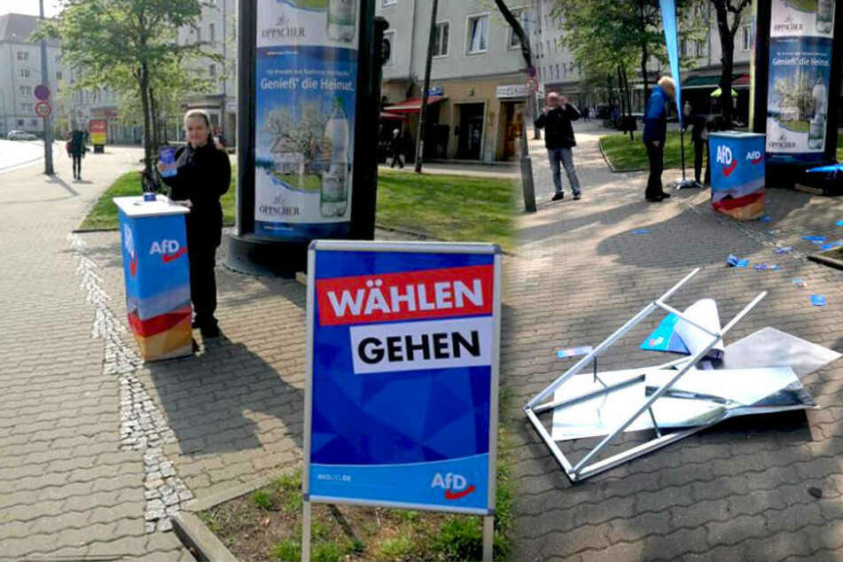 AfD-Stand in Dresden attackiert: Betreiber verletzt