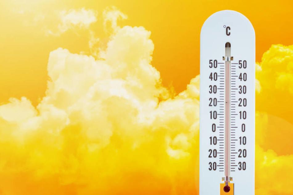 Hier war es Dienstag in ganz Deutschland am heißesten