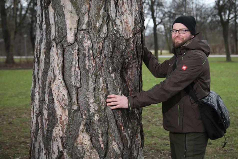 Martin Miedtank (30) ist Dresdens oberster Baumpfleger.