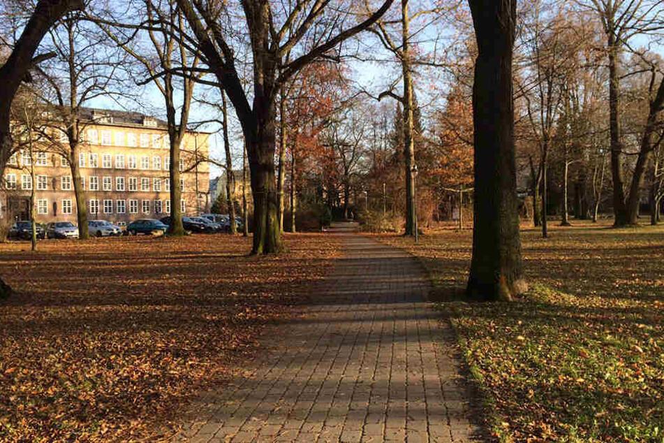 Der Verdächtige fiel der Polizei im Park der Opfer des Faschismus auf.