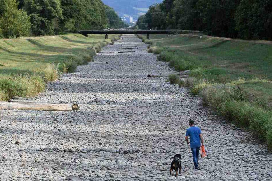 Das ausgetrocknete Flussbett der Dreisam bei Freiburg kann man mittlerweile zu Fuß durchqueren. Das Wasser ist dort verschwunden.