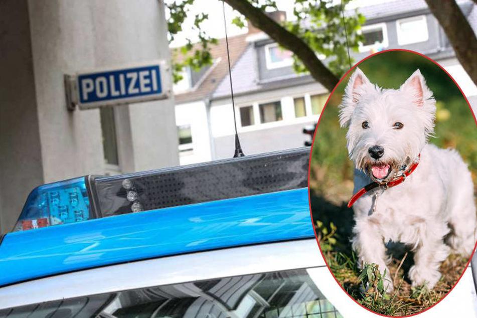 Zwischen 9.30 Uhr und 10 Uhr war der Mann im Bereich der Fürstenberg-Schule unterwegs.