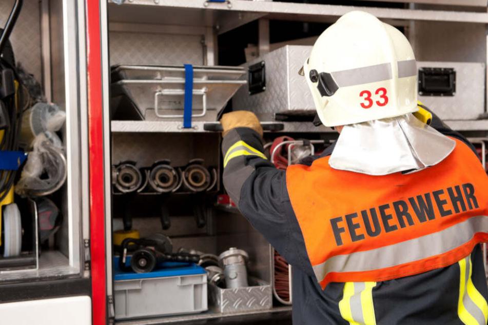 In der Nacht zum Freitag brannten in Grünau-Ost mehrere Müllcontainer komplett nieder. (Symbolbild)