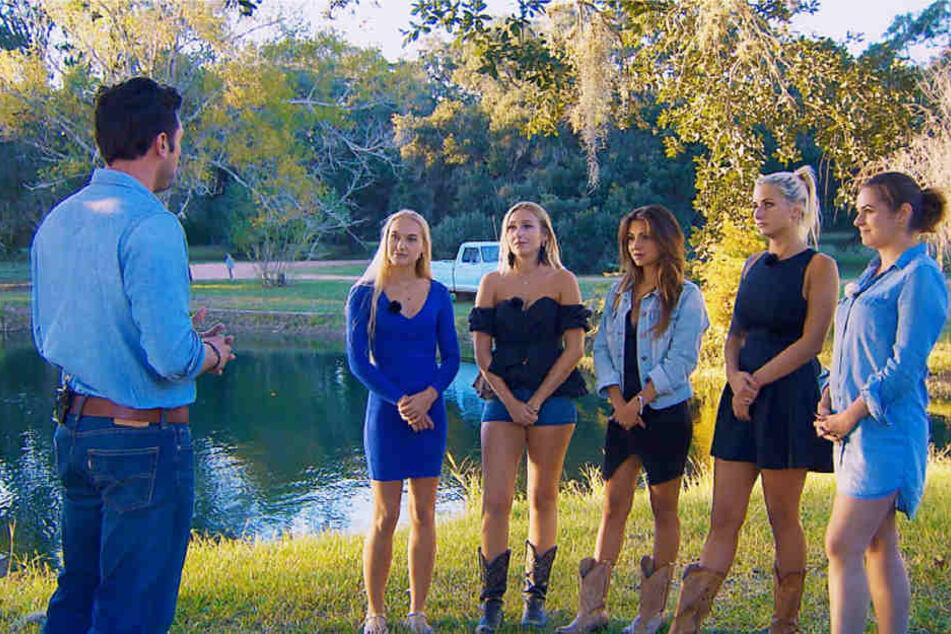 In der 7. Folge stand Bachelor Daniel nur noch fünf Kandidatinnen gegenüber.