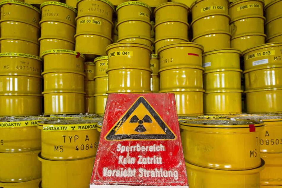 Gelbe Fässer für Atommüll stehen am 26.10.2011 in rund 500 Metern Tiefe im Endlager für schwach und mittelradioaktiven Atommüll in Morsleben