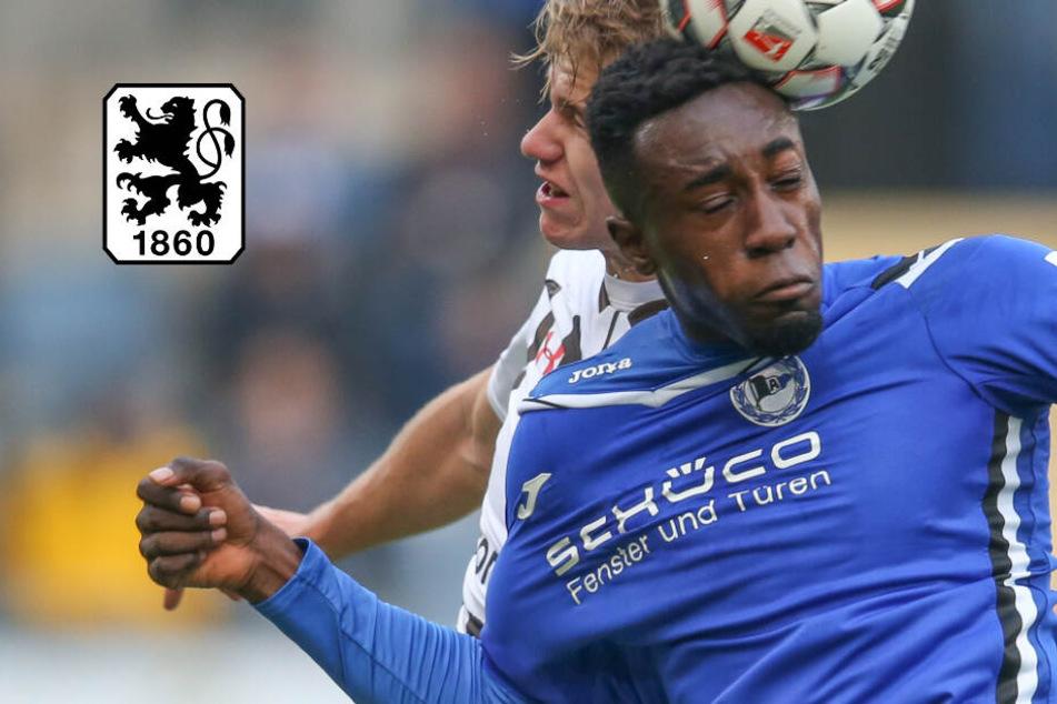 TSV 1860 München findet Ersatz für Adriano Grimaldi: Dieser Youngster ist nun ein Löwe