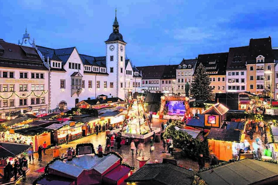 Freiberg sucht schon einen Weihnachtsbaum