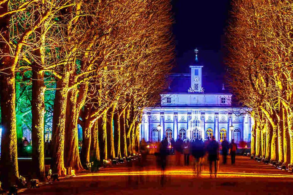 Licht-Spektakel: Pillnitzer Schlosspark wird zum Christmas Garden