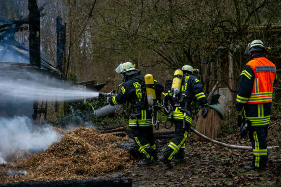 Die Feuerwehr konnte schließlich die weitere Ausbreitung des Feuers verhindern.