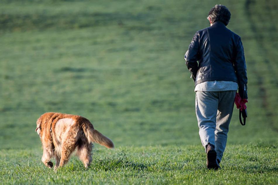 Eine Hundehalterin versuchte ihren tierischen Freund zu retten und springt in den Rhein - doch sie schaffte ihn nur noch leblos aus dem Wasser. (Symbolbild)