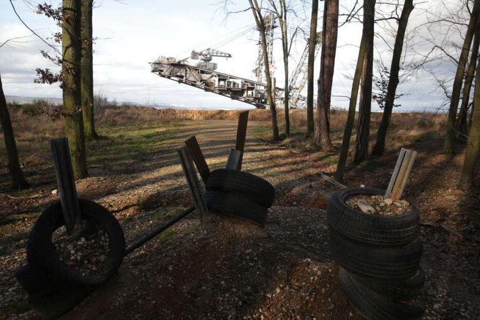 Aktivisten versperren RWE-Mitarbeitern die Wege im Hambacher Forst.