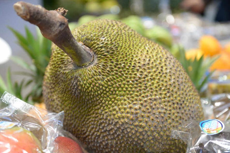 Die länglich ovale Frucht des Jackfruchtbaums wächst in Süd- und Südostasien. (Archivbild)