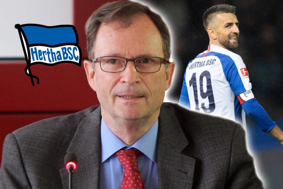 DFB-Richter stichelt gegen Ibisevic und bringt Hertha auf die Palme!
