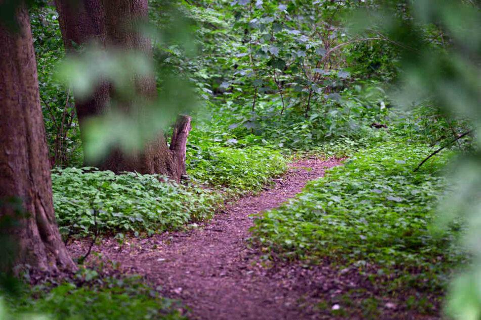 Ein unbekannter Mann hat ein 10-jähriges Mädchen in einem Gebüsch in Halle (Saale) zu sexuellen Handlungen genötigt.
