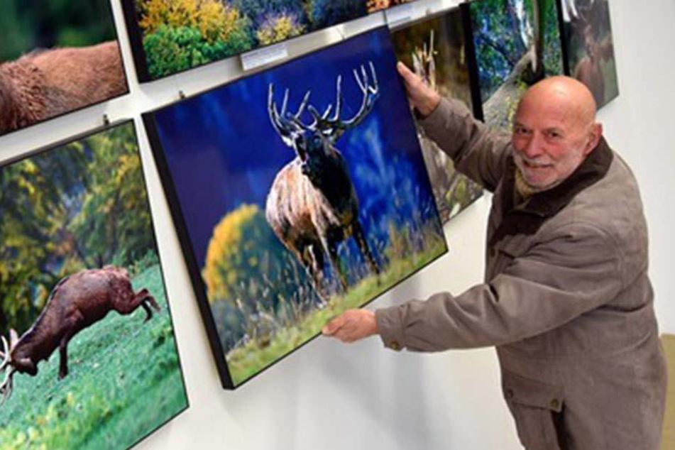 Sachsens berühmter Naturfotograf Harald Lange (80) stellt seit Samstag 300 seiner schönsten Wald-Bilder auf Schloss Colditz aus.
