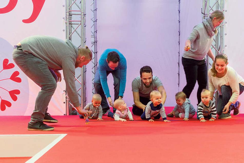 Auf die Plätze, krabbel, los: Beim Krabbel-Wettbewerb siegte gestern der  kleine Johann (11 Monate alt), ganz rechts im Bild.