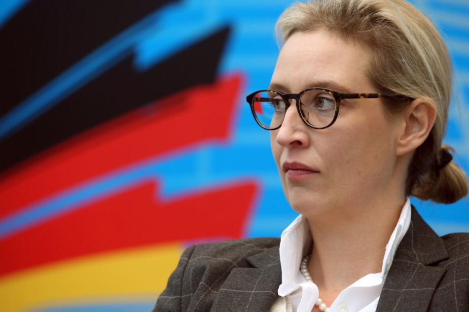 An sie ging die dubiose Spende: AfD-Bundestagsfraktionschefin Alice Weidel. (Symbolbild)
