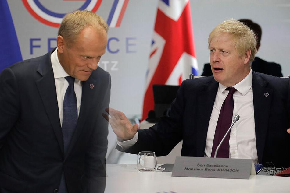 Chaos-Brexit rückt näher: Britischer Premier ohne einzigen Vorschlag bei G7-Gipfel