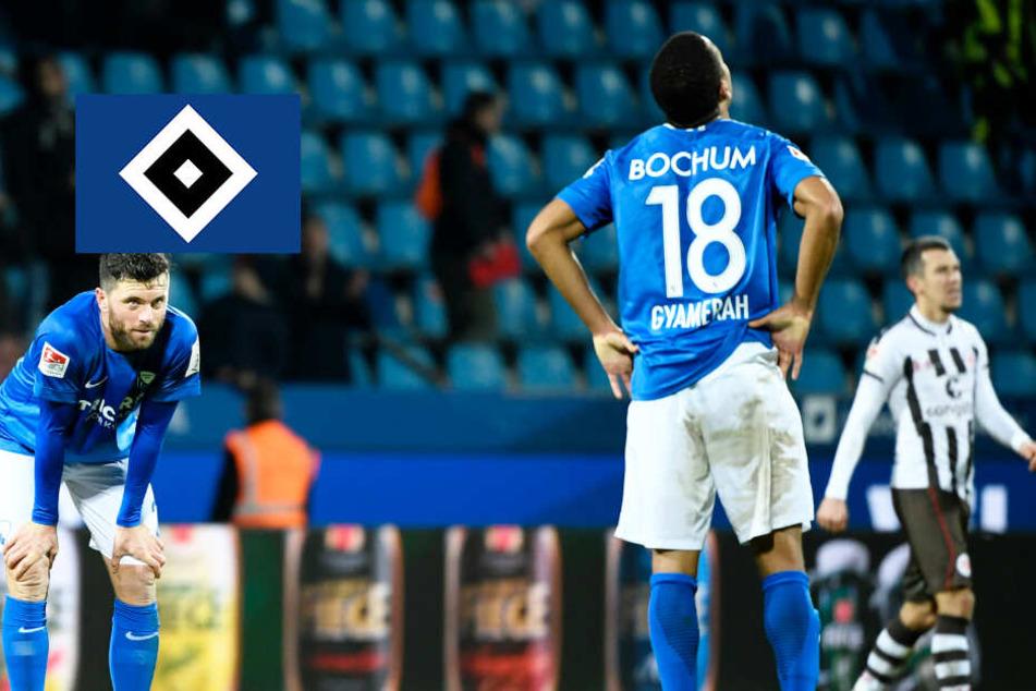 Erster Neuzugang! HSV holt Rechtsverteidiger vom VfL Bochum