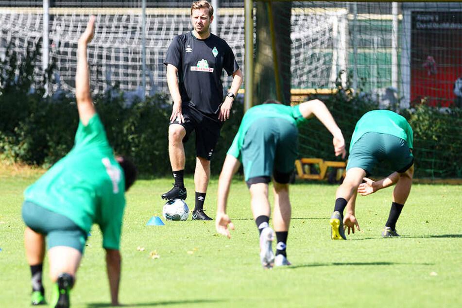 Kommen andere Teams nicht so in Tritt wie gedacht, kann der SV Werder Bremen in den Kampf um die Europa-League-Plätze eingreifen.