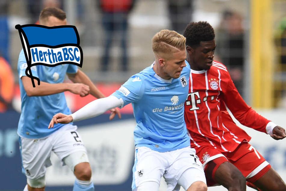 22 Tore in 30 Spielen: Hertha BSC jagt diesen Bayern-Knipser!