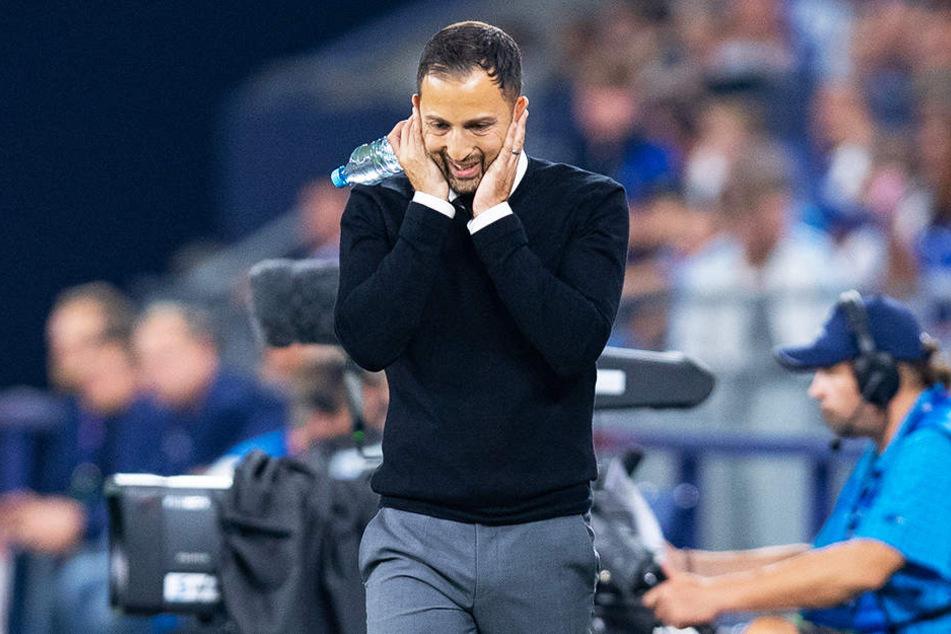 Schalkes Trainer Domenico Tedesco sorgte mit seinem Versprecher für viele Lacher.