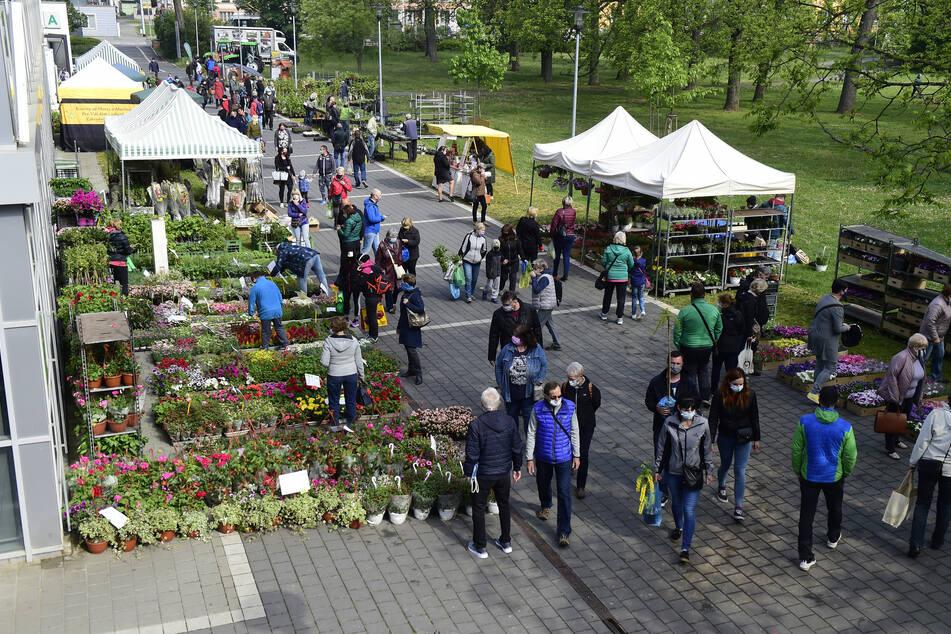 Menschen mit Schutzmasken besuchen einen Markt in Tschechien für Gartenzubehör, der vor dem Flora-Austellungszentrum aufgebaut wurde. Im Rahmen der landesweiten Lockerungen der Corona-Maßnahmen konnte der Markt wieder eröffnen.