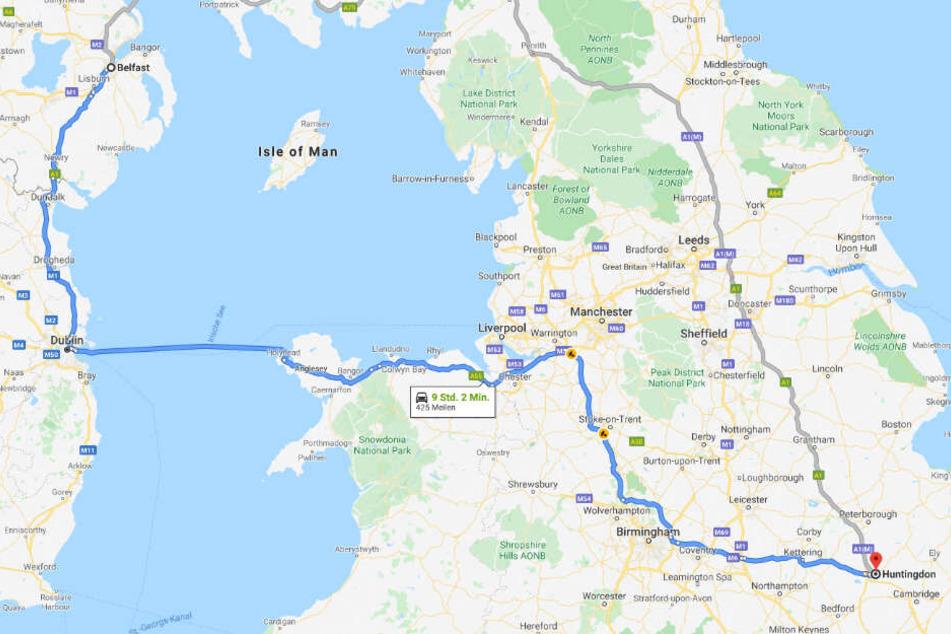 Von Nordirland nach England. Hund Moses legte eine ordentliche Strecke hinter sich.