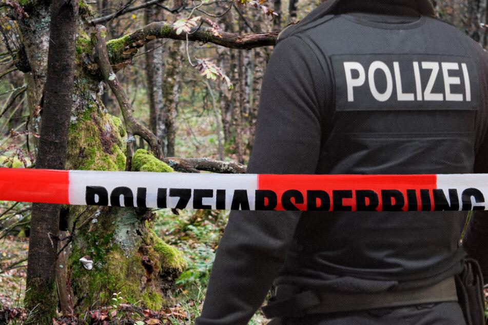 Erst kürzlich wurden in einem Wald in Rheinland-Pfalz menschliche Überreste entdeckt (Symbolbild).