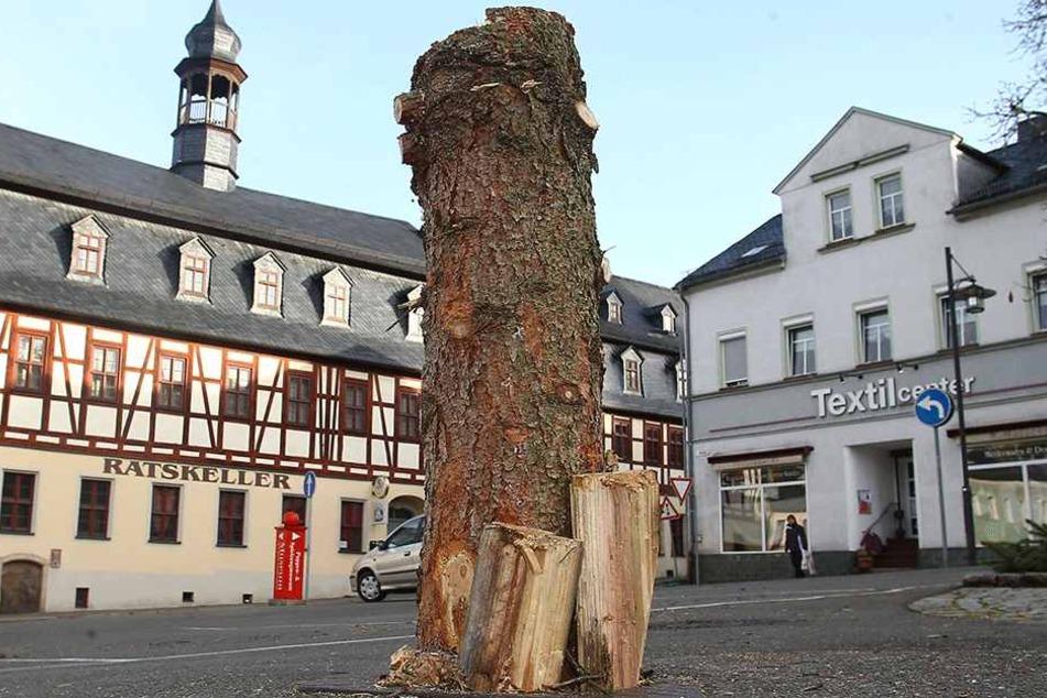 """Die """"Schandfichte"""" haben Mitarbeiter vom Bauhof entfernt. Nächste Woche soll dann der neue Baum kommen."""