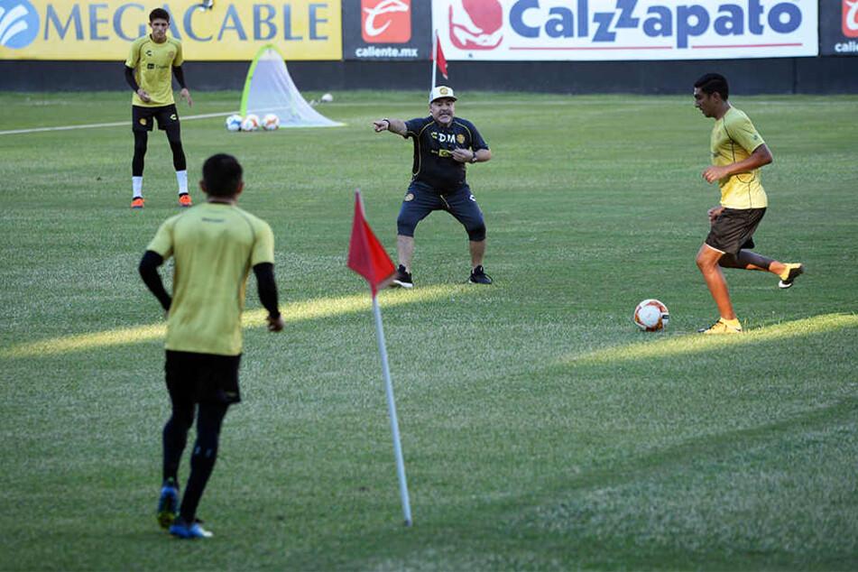 Gab bei seinem ersten Training des mexikanischen Zweitligisten Dorados de Sinaloa gleich energisch Anweisungen: Diego Armando Maradona.