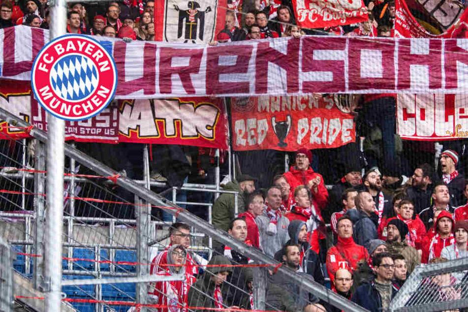 Plakat-Eklat der Bayern-Fans: So entstanden die Spruchbänder