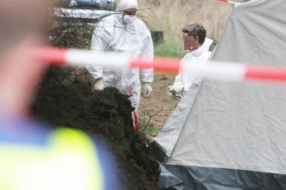 Die Leiche des Piloten wurde direkt nach dem Absturz in dem Wald bei Grebenhain gefunden (Symbolbild).