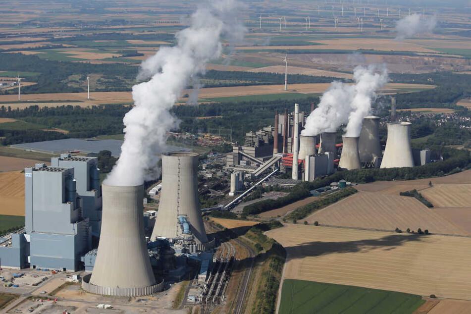 Das Kraftwerk Neurath wird mit Braunkohle betrieben.