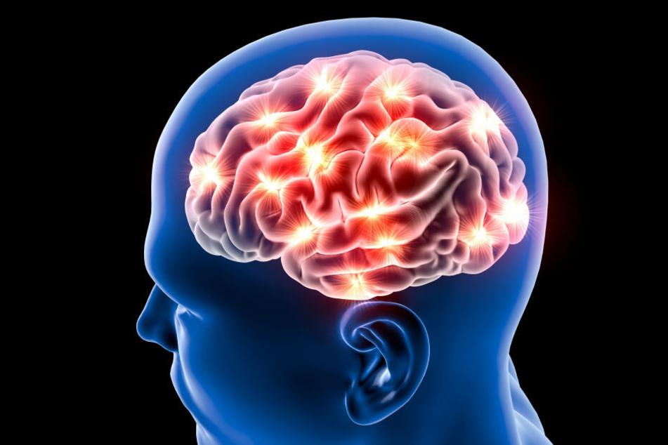 Wird unser Gehirn nicht ständig mit ausreichend Blut versorgt, kann dies irreparable Folgen haben.
