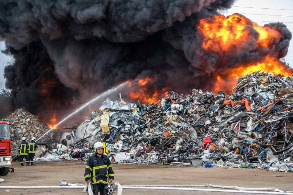 Die Feuerwehr kämpft gegen die Flammen auf dem Recyclinghof.