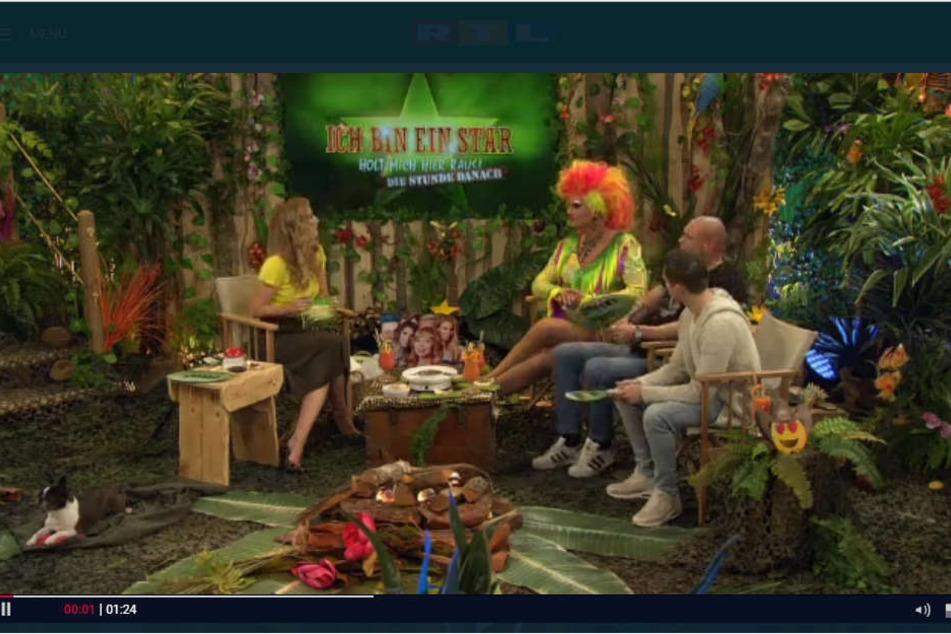 Im RTL-Plus-Dschungeltalk waren zu Gast: Joey Heindle, Thorsten Legat und Olivia Jones.