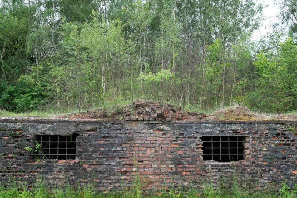 """""""Alles voll mit Knochen"""": Massengrab in ehemaligem KZ-Außenlager entdeckt"""