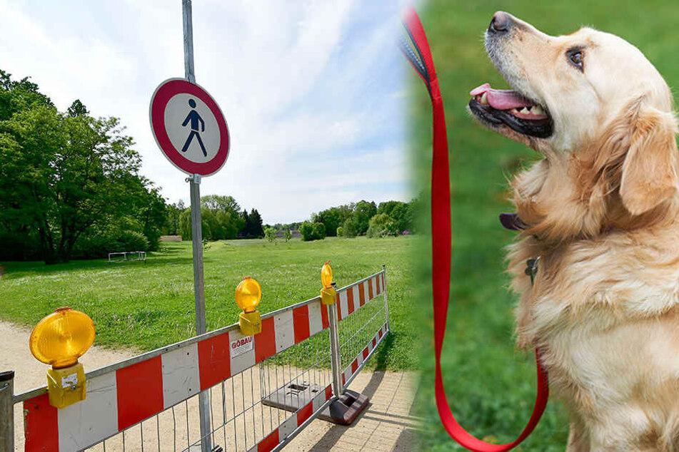 Gefahr für Mensch und Tier: Diese Hundewiese ist eine Schande